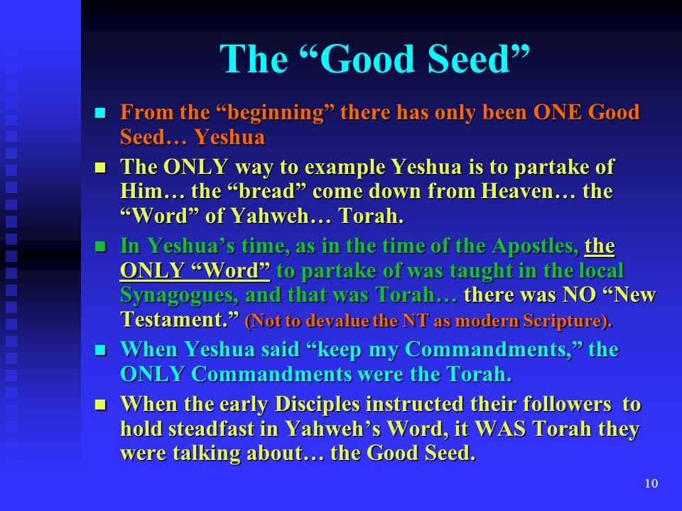 The Good Seed From the beginning there has only been ONE Good Seed… Yeshua.