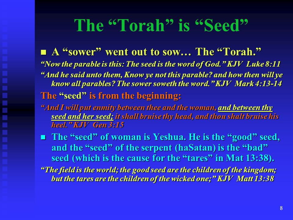 The Torah is Seed A sower went out to sow… The Torah.