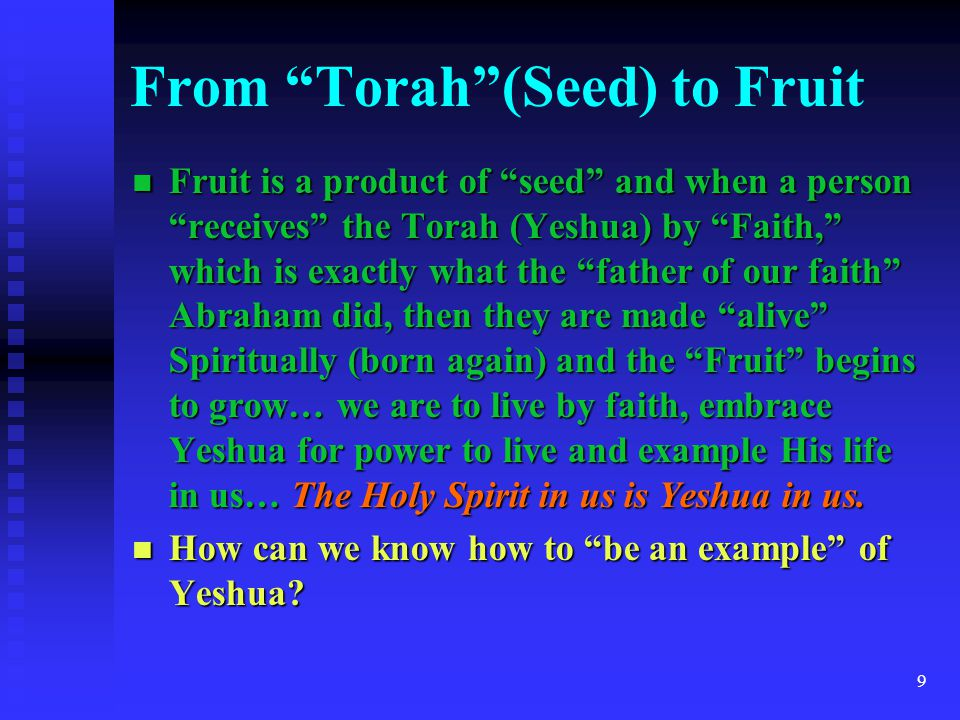 From Torah (Seed) to Fruit