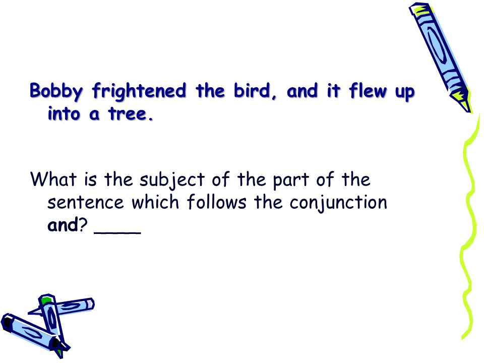Bobby frightened the bird, and it flew up into a tree.