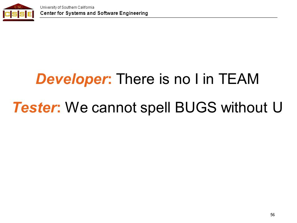 Developer: There is no I in TEAM