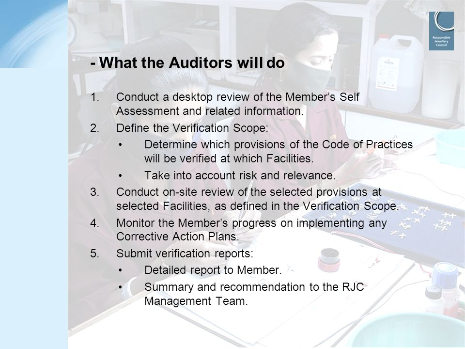 - What the Auditors will do