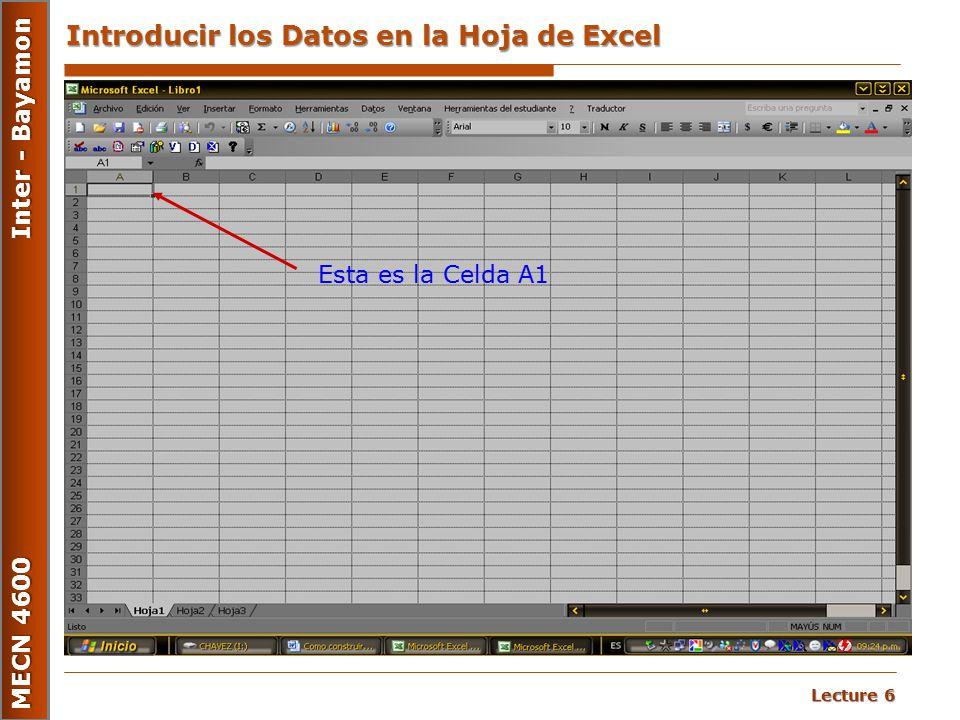 Introducir los Datos en la Hoja de Excel