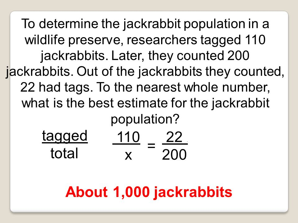 tagged total 110 x 22 . 200 = About 1,000 jackrabbits