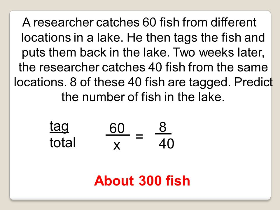 A researcher catches 60 fish from different locations in a lake