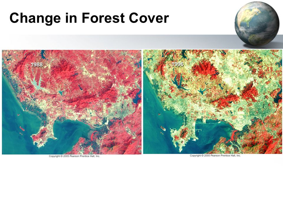 Change in Forest Cover