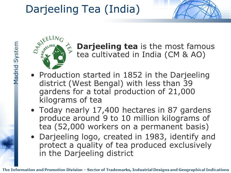 Darjeeling Tea (India)