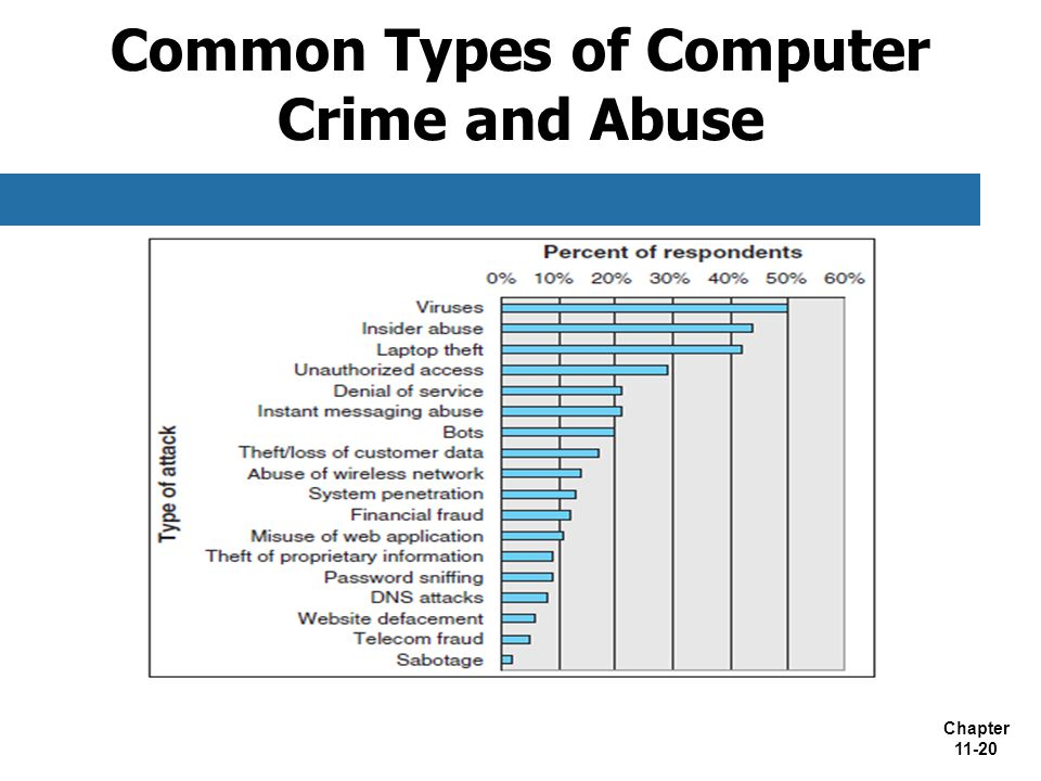 Common Types of Computer Crime and Abuse