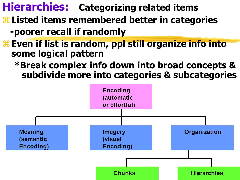 Hierarchies: Categorizing related items