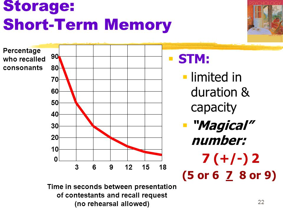 Storage: Short-Term Memory