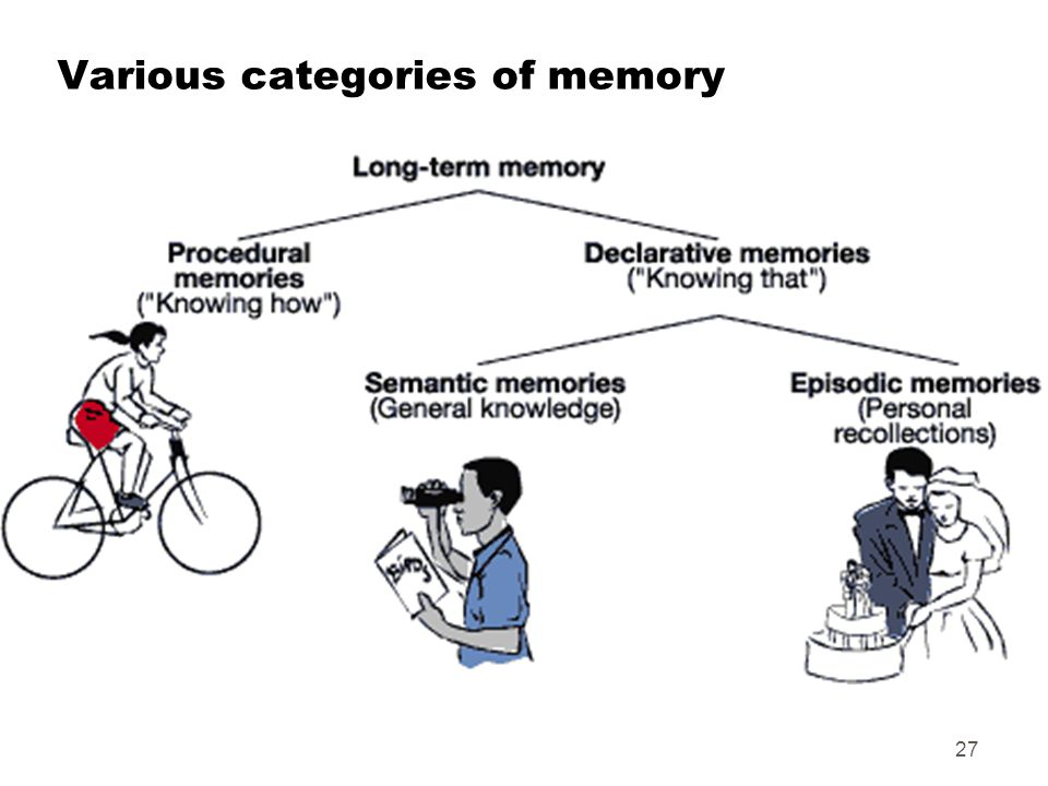 Various categories of memory