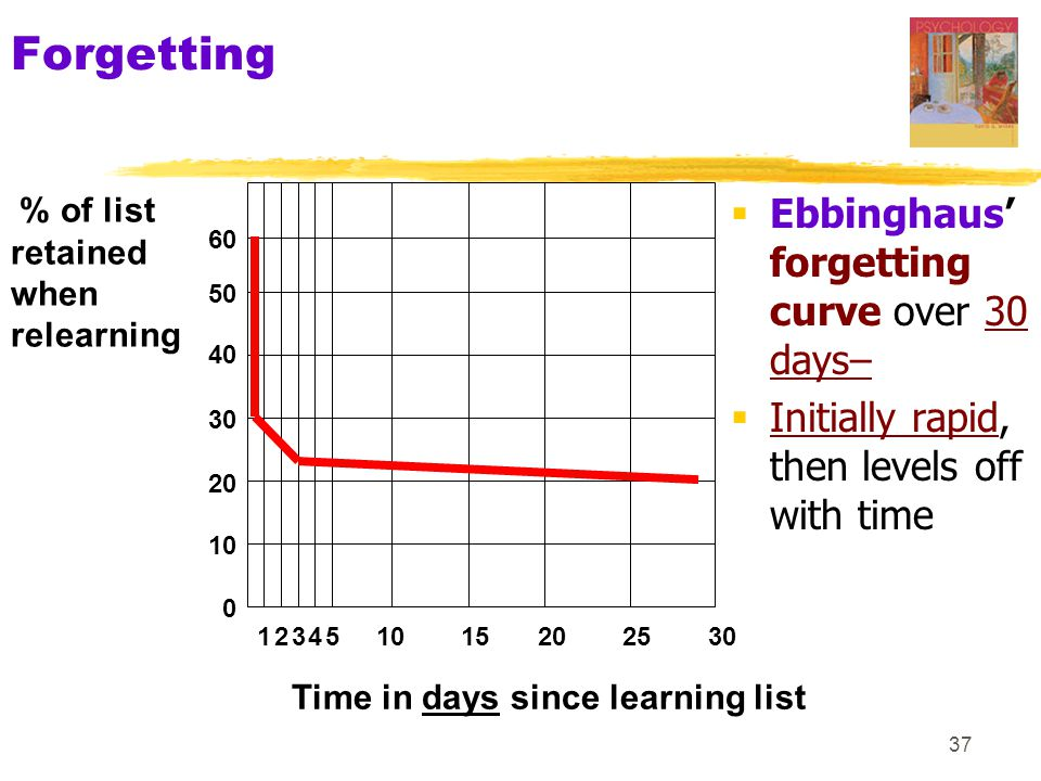 Forgetting Ebbinghaus' forgetting curve over 30 days–