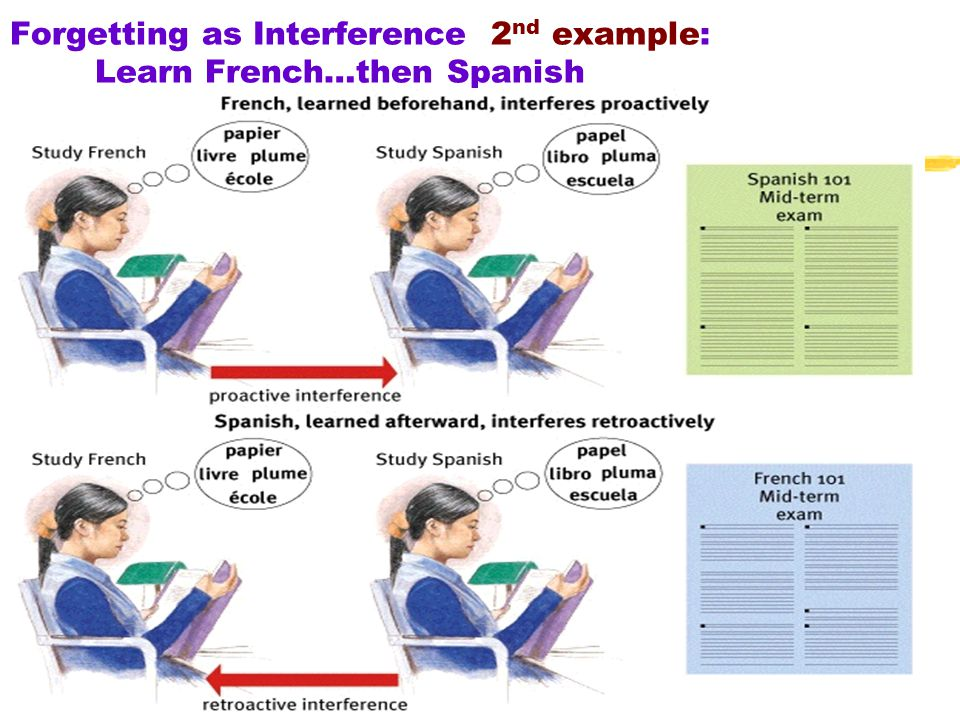 Forgetting as Interference 2nd example: Learn French…then Spanish