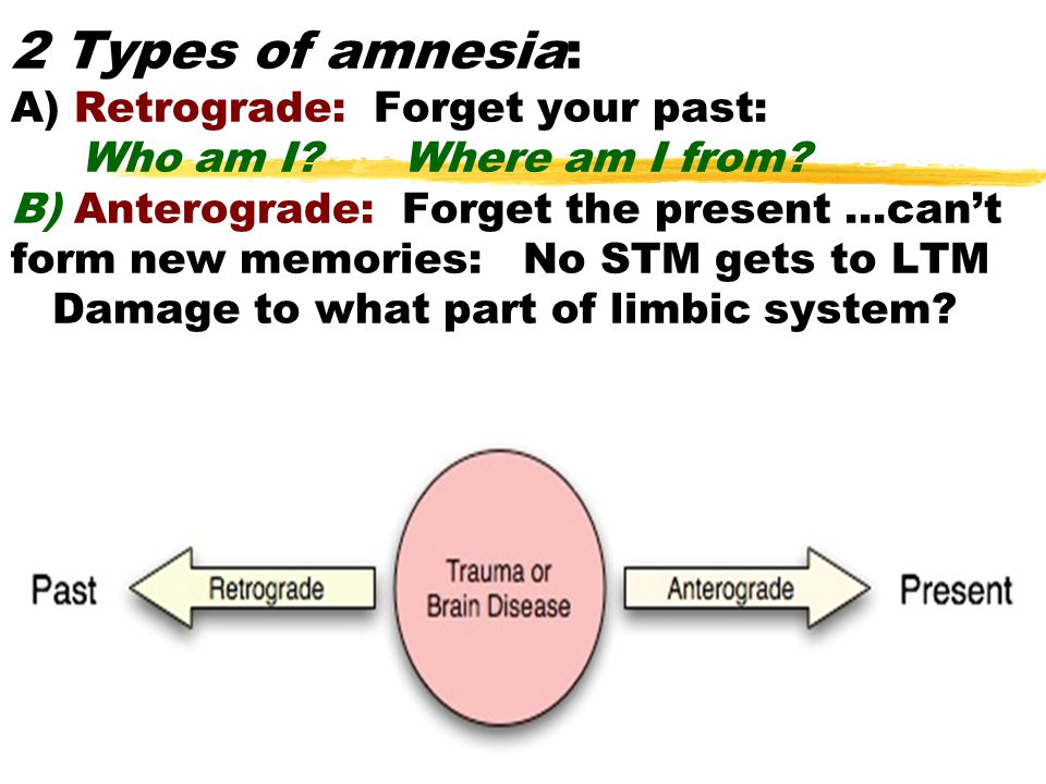 2 Types of amnesia: A) Retrograde: Forget your past: Who am I