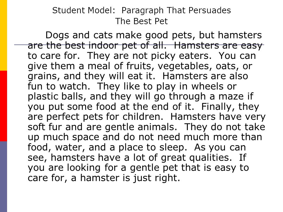 Student Model: Paragraph That Persuades