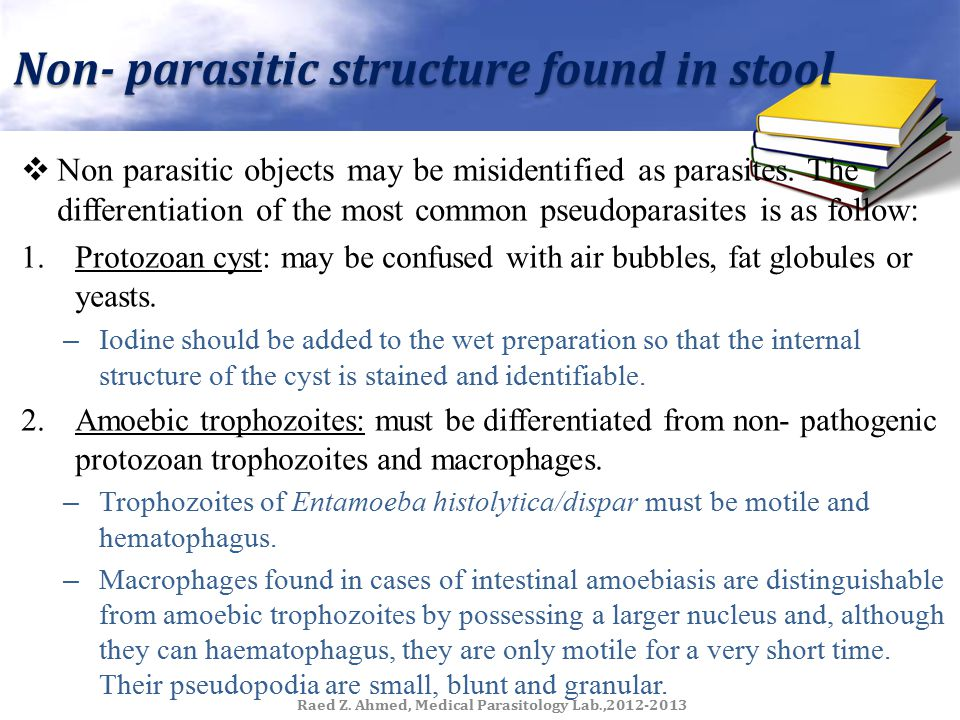 Non- parasitic structure found in stool