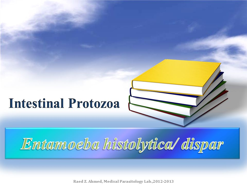 Entamoeba histolytica/ dispar