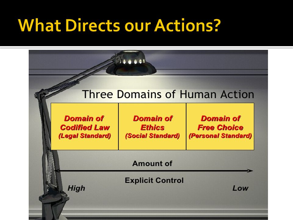 What Directs our Actions