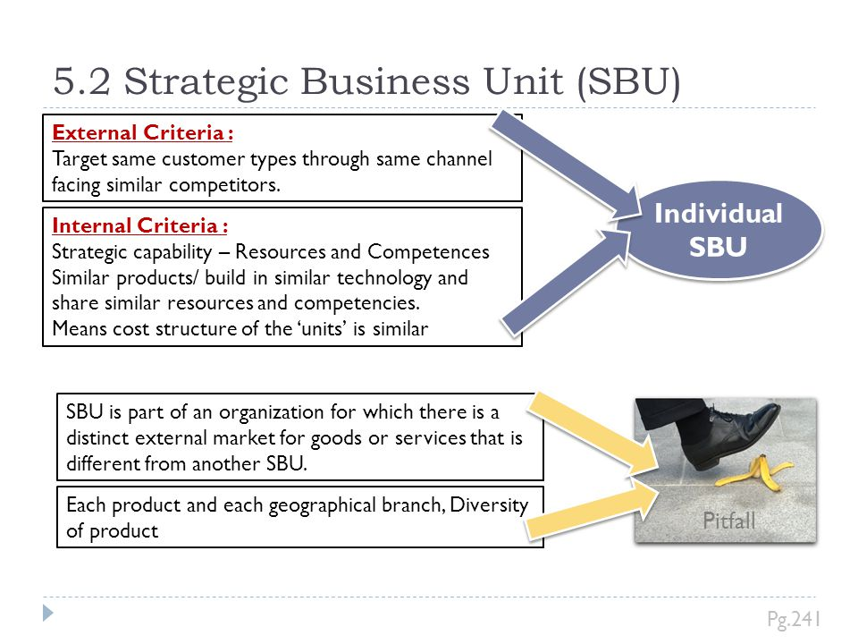 5.2 Strategic Business Unit (SBU)