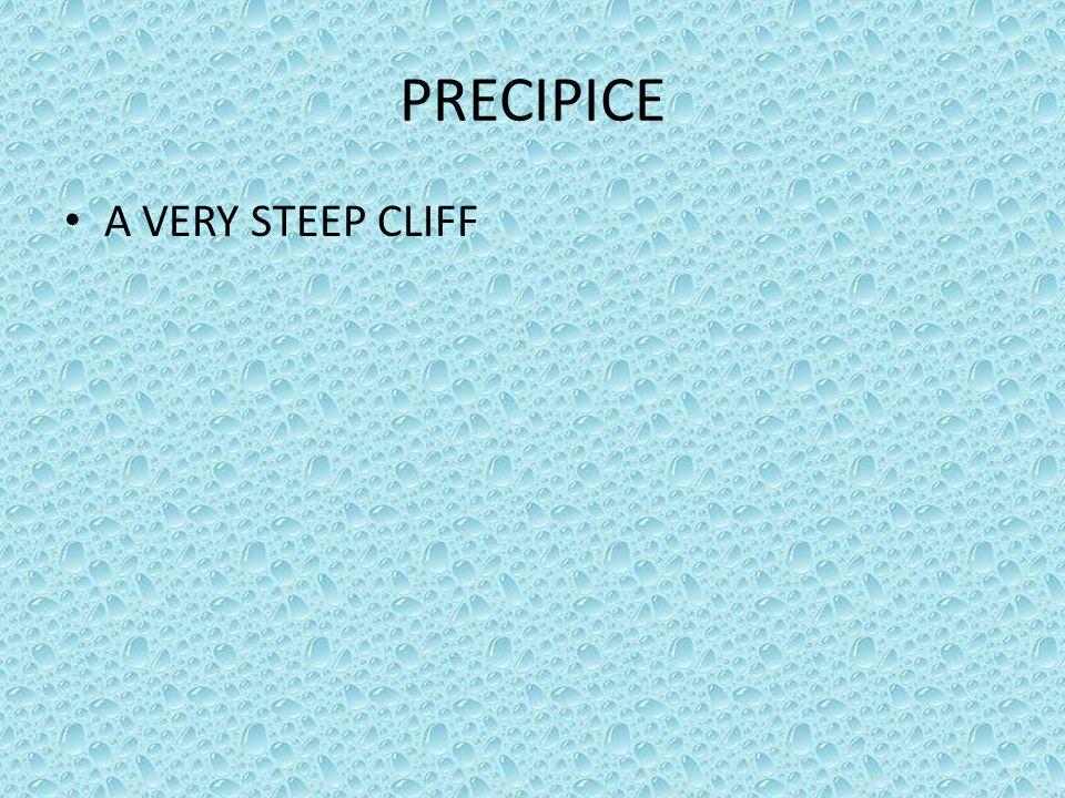 PRECIPICE A VERY STEEP CLIFF