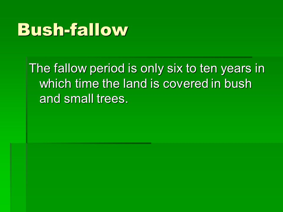 Bush-fallow The fallow period is only six to ten years in which time the land is covered in bush and small trees.