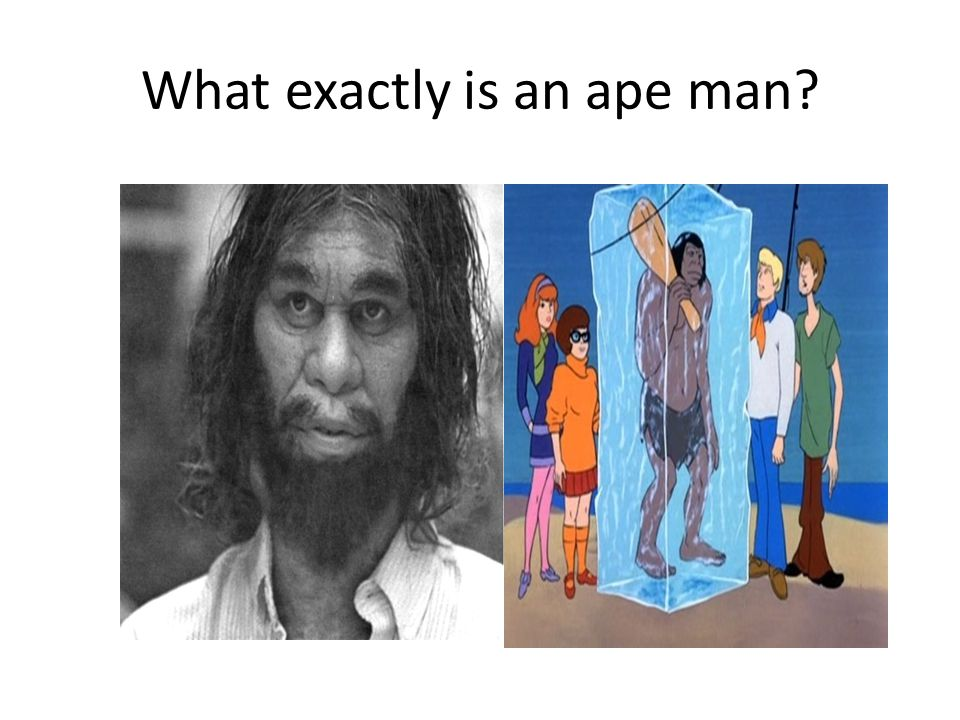 What exactly is an ape man