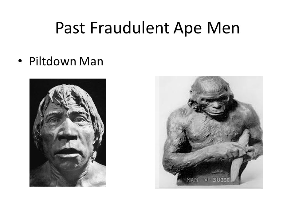 Past Fraudulent Ape Men
