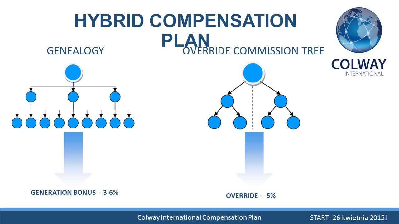 HYBRID COMPENSATION PLAN