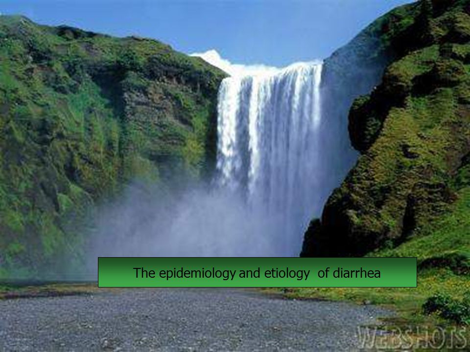 The epidemiology and etiology of diarrhea