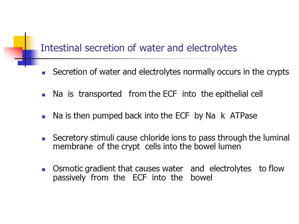 Intestinal secretion of water and electrolytes