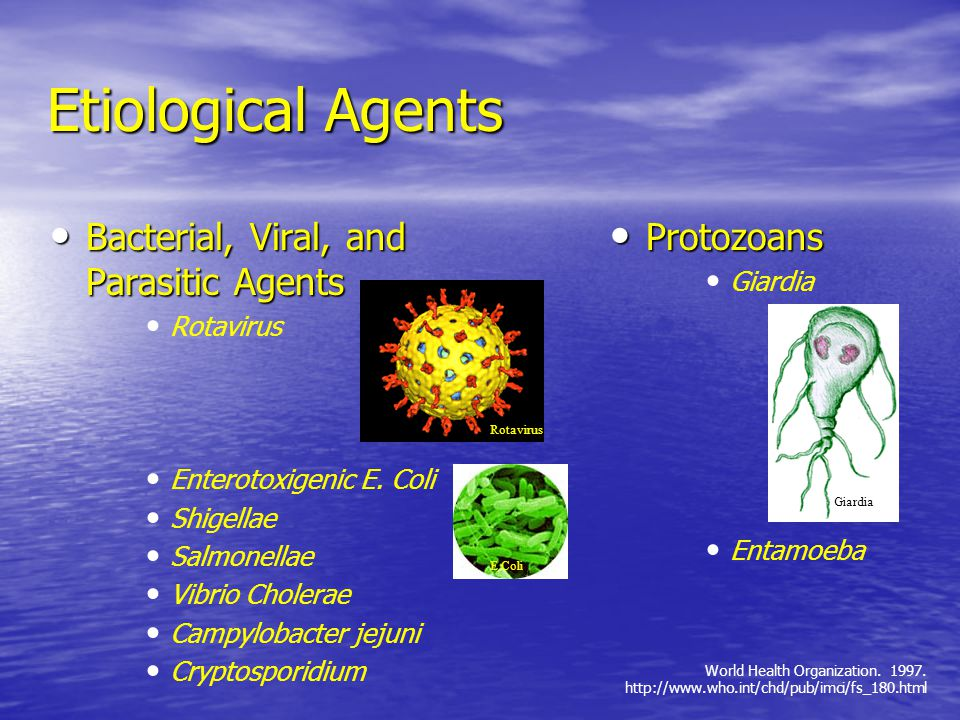 Etiological Agents Bacterial, Viral, and Parasitic Agents Protozoans