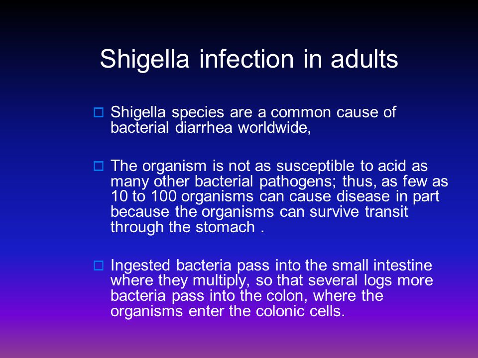 Shigella infection in adults