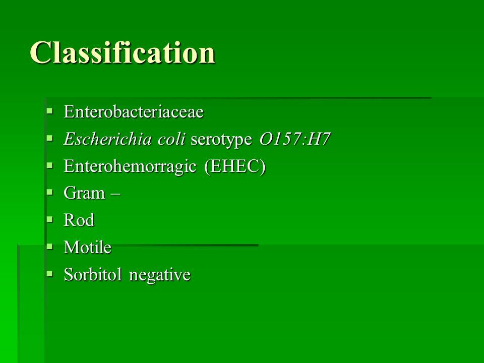 Classification Enterobacteriaceae Escherichia coli serotype O157:H7