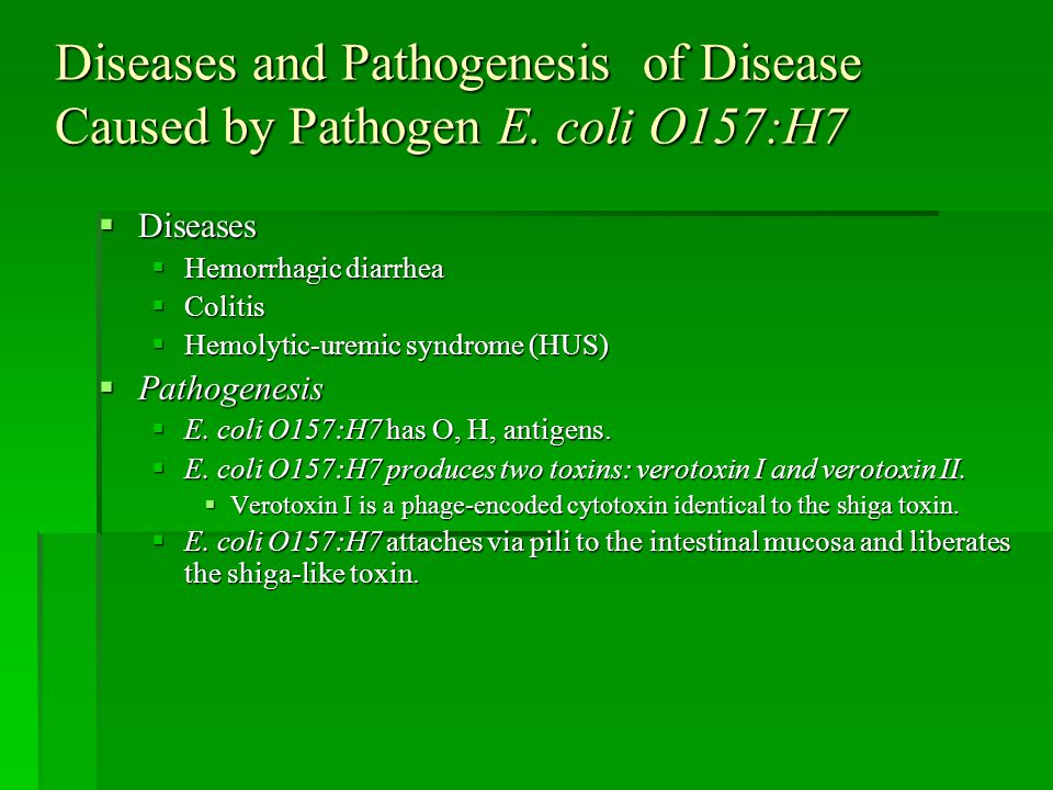 Diseases and Pathogenesis of Disease Caused by Pathogen E. coli O157:H7