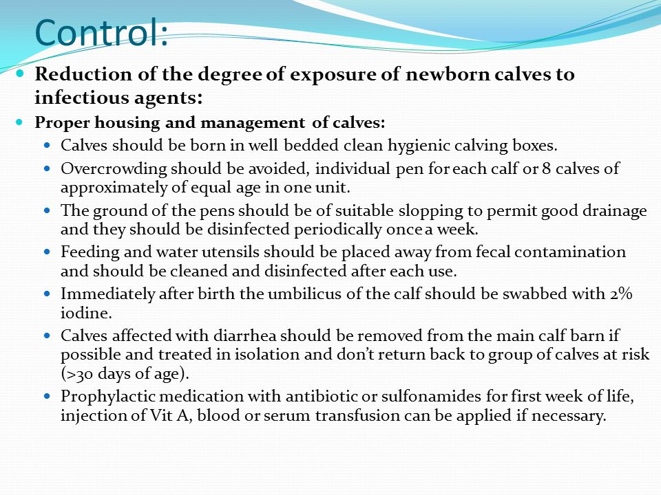 Control: Reduction of the degree of exposure of newborn calves to infectious agents: Proper housing and management of calves: