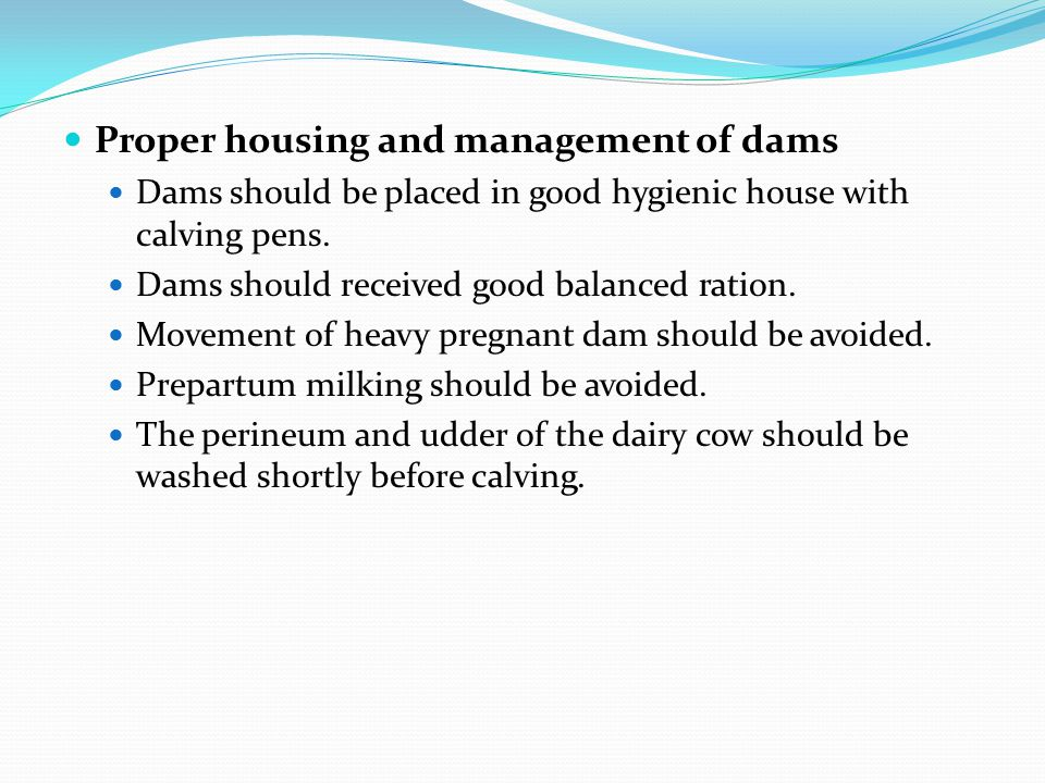 Proper housing and management of dams