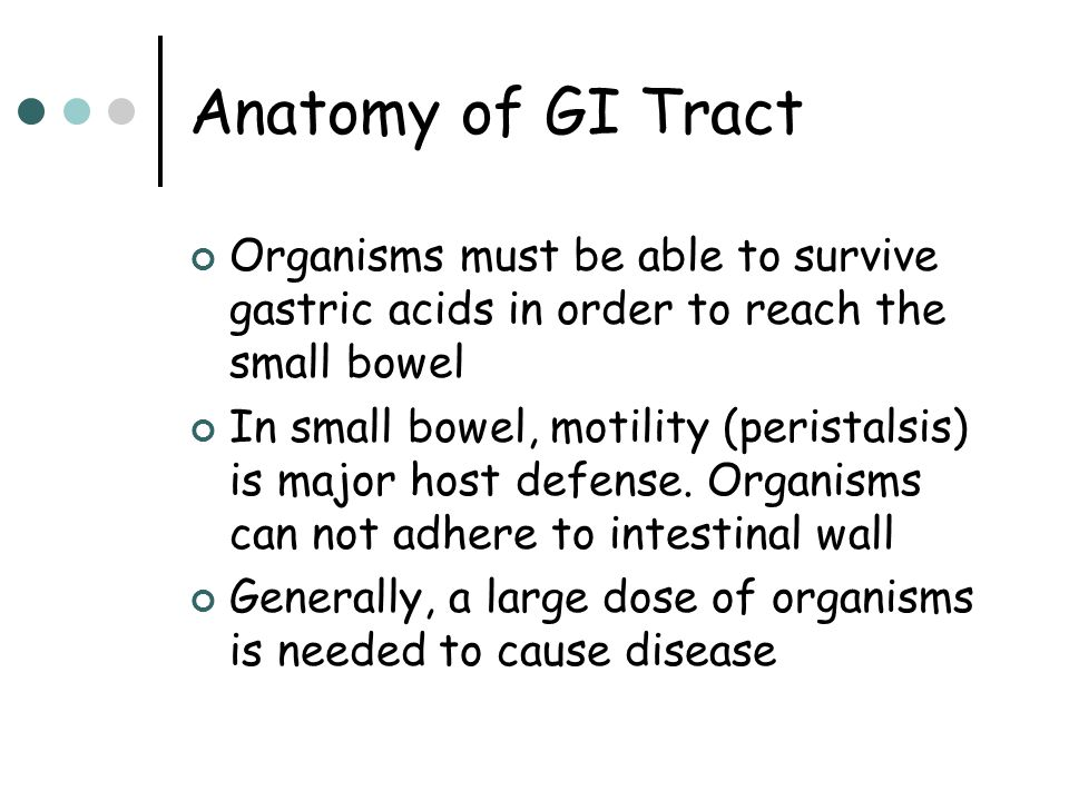 Anatomy of GI Tract Organisms must be able to survive gastric acids in order to reach the small bowel.