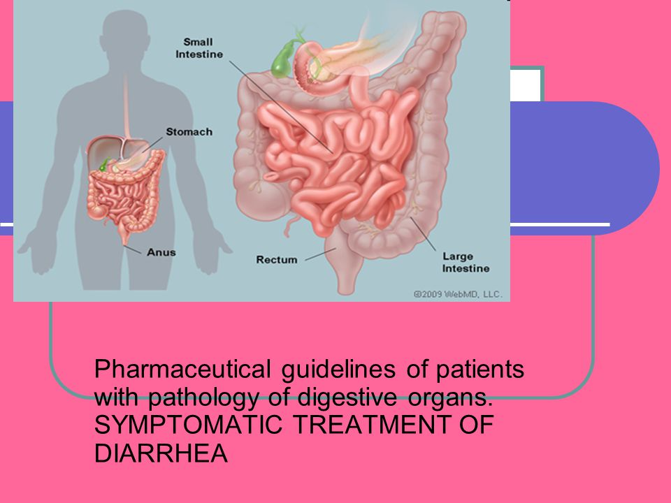 Pharmaceutical guidelines of patients with pathology of digestive organs.