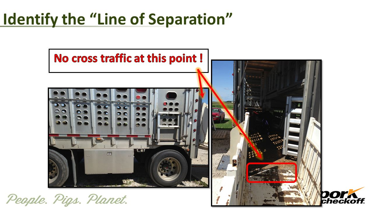Identify the Line of Separation