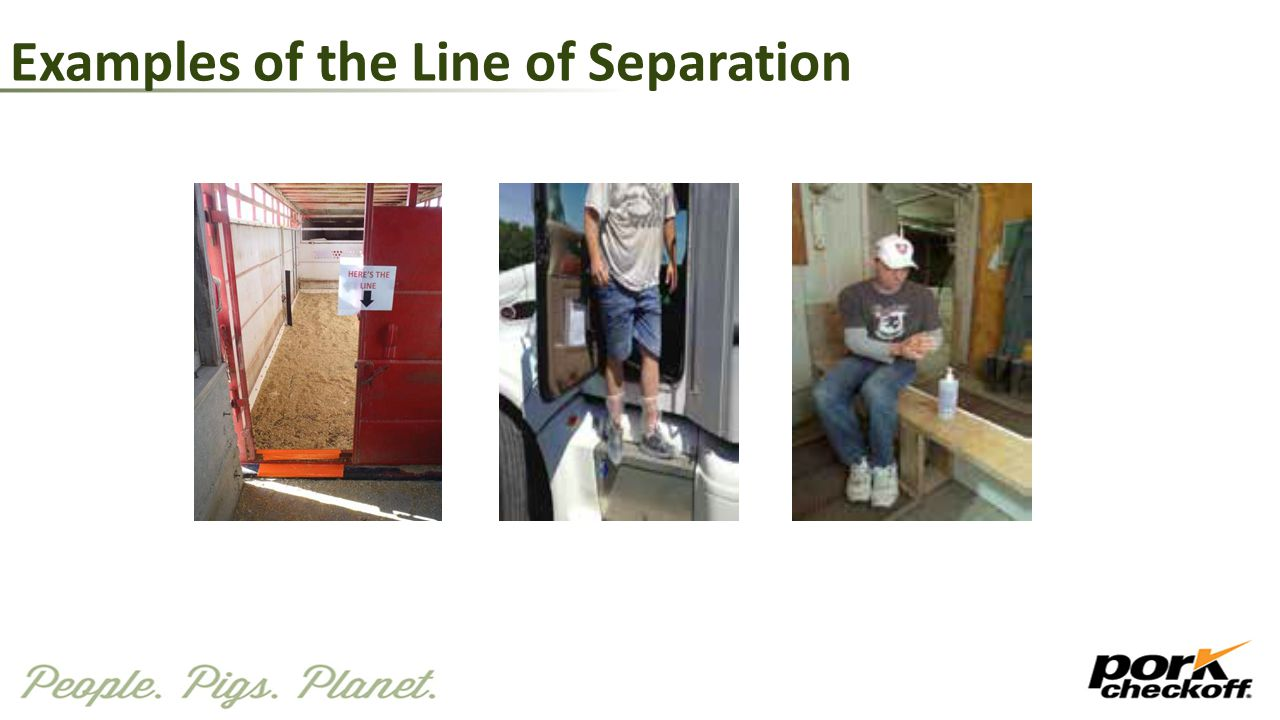 Examples of the Line of Separation