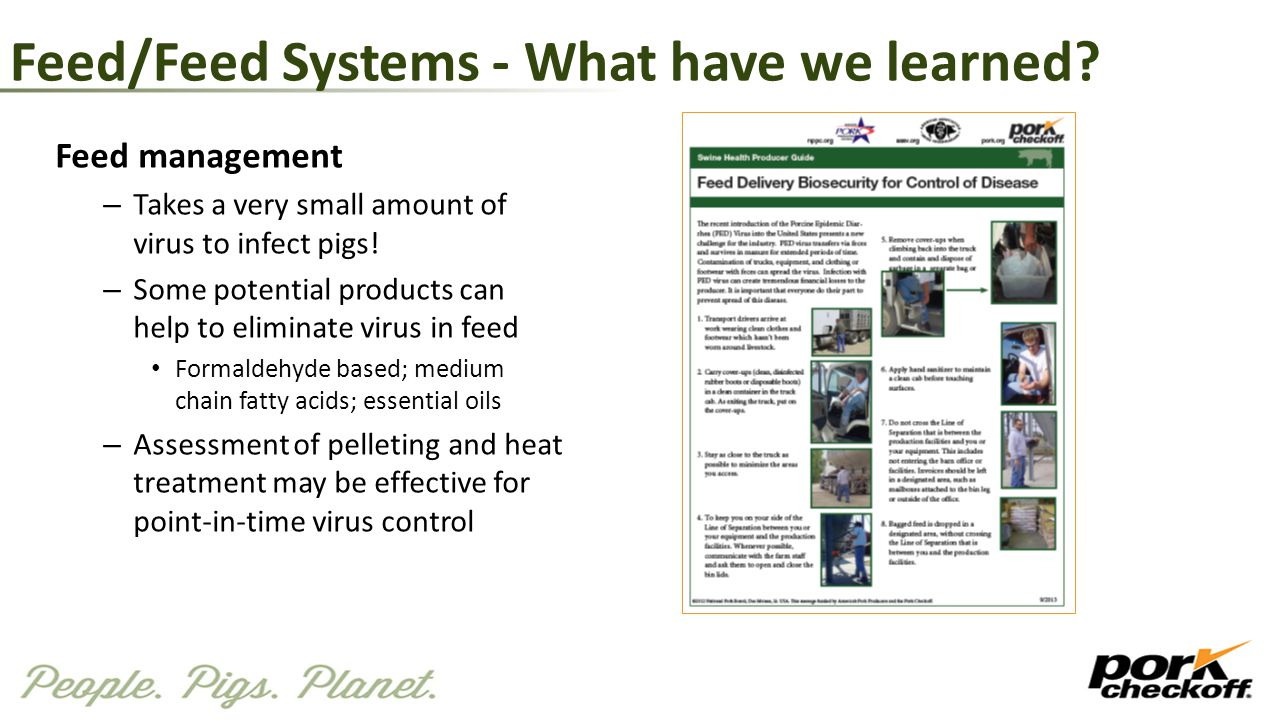 Feed/Feed Systems - What have we learned