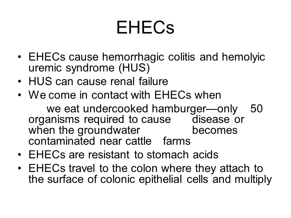 EHECs EHECs cause hemorrhagic colitis and hemolyic uremic syndrome (HUS) HUS can cause renal failure.