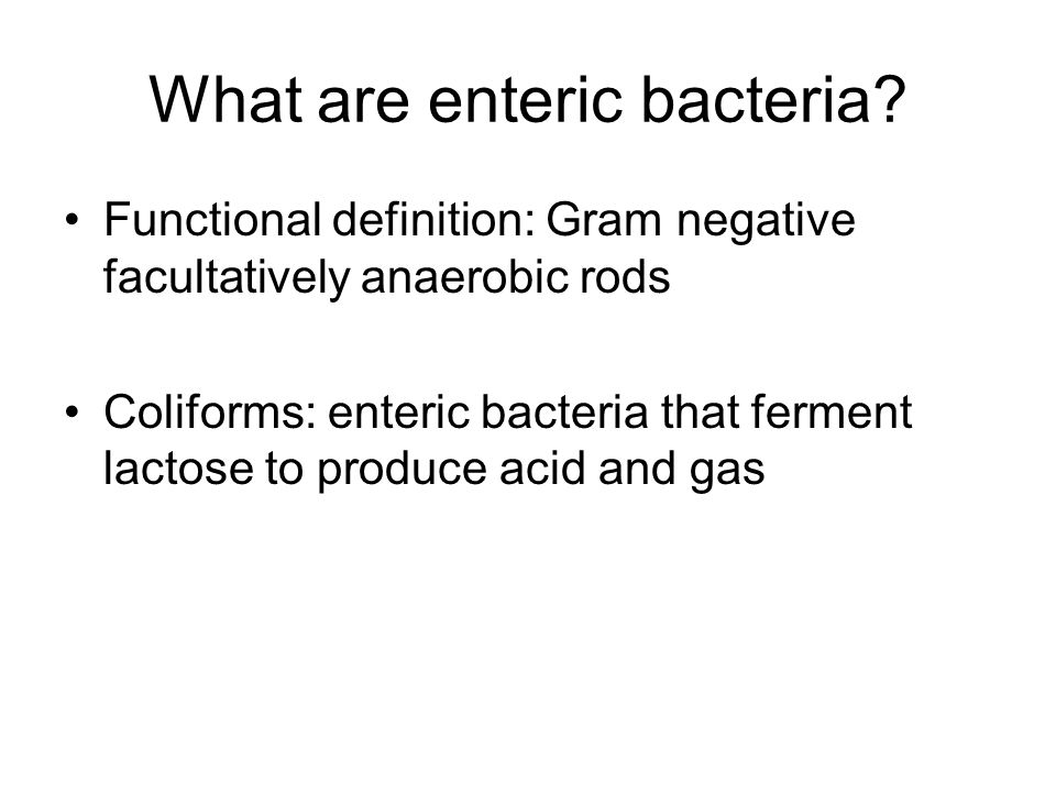 What are enteric bacteria