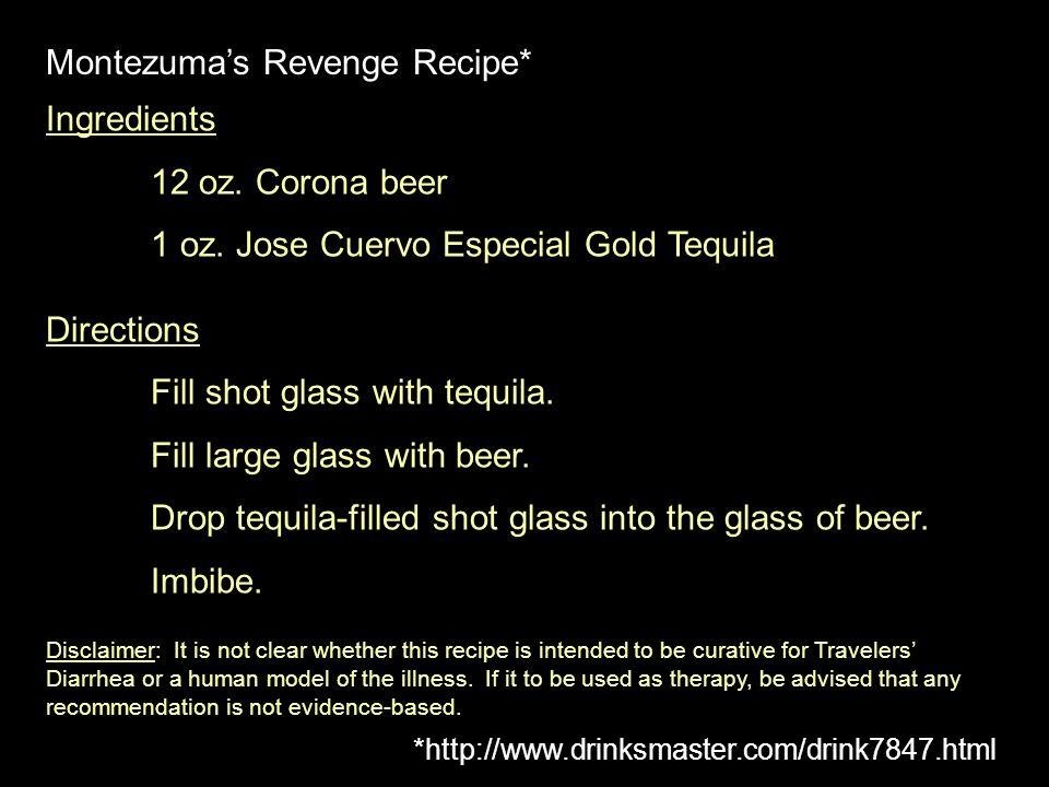 Montezuma's Revenge Recipe*