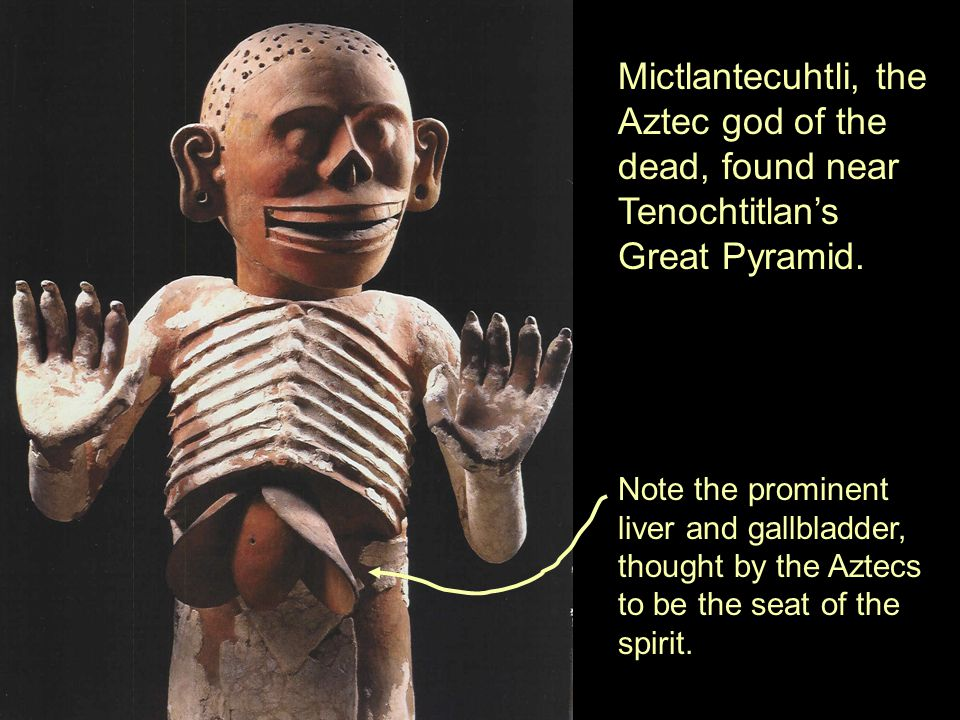 Mictlantecuhtli, the Aztec god of the dead, found near Tenochtitlan's Great Pyramid.