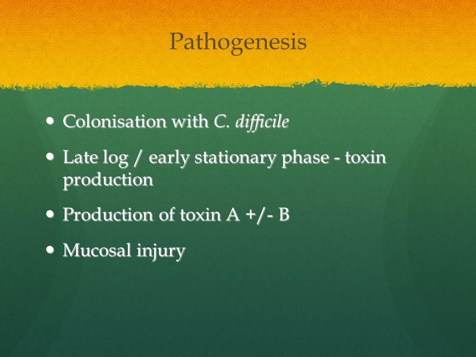 Pathogenesis Colonisation with C. difficile