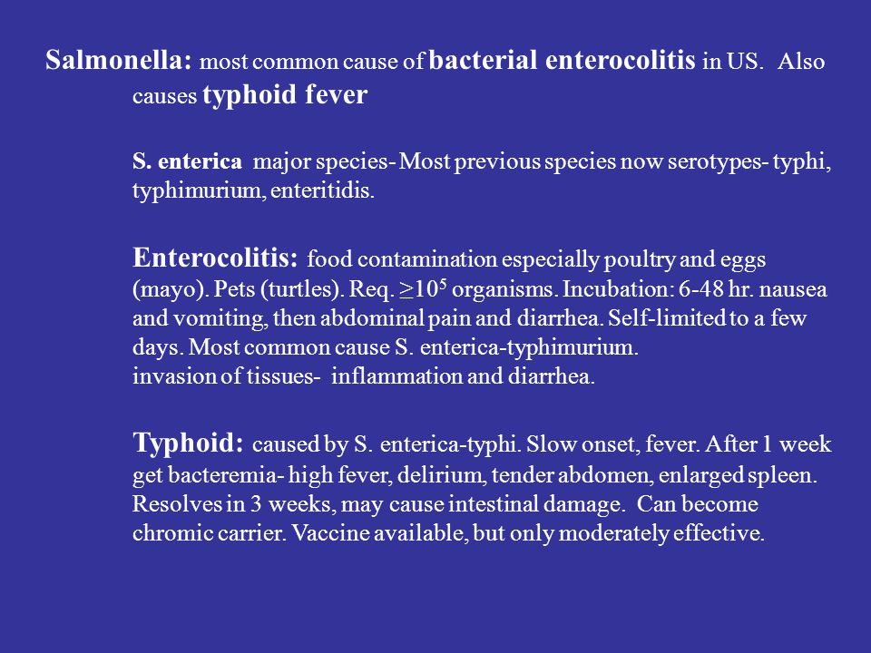 Salmonella: most common cause of bacterial enterocolitis in US. Also