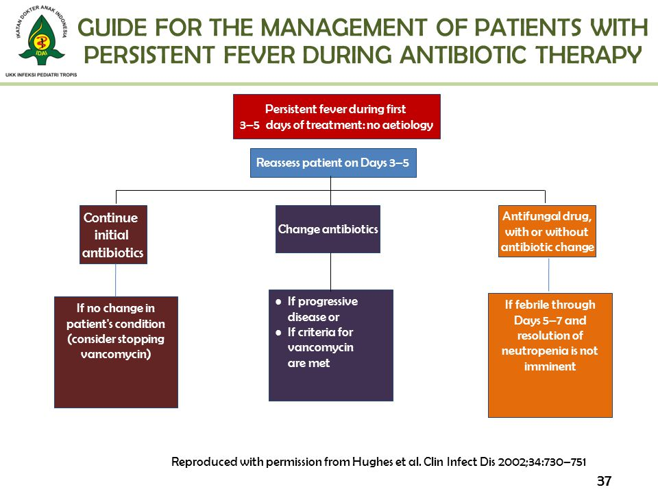 GUIDE FOR THE MANAGEMENT OF PATIENTS WITH PERSISTENT FEVER DURING ANTIBIOTIC THERAPY
