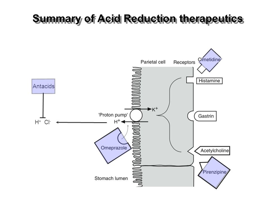 Summary of Acid Reduction therapeutics
