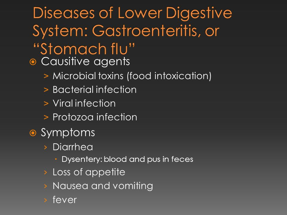 Diseases of Lower Digestive System: Gastroenteritis, or Stomach flu